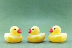 Żółta gumowa kaczka Fotografia Royalty Free
