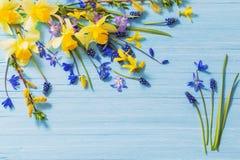 Żółta i błękitna wiosna kwitnie na drewnianym tle Obrazy Royalty Free