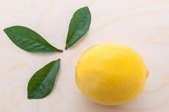 Żółta jaskrawa cytryna z trzy liści zielonym zakończeniem na cuttin obrazy stock