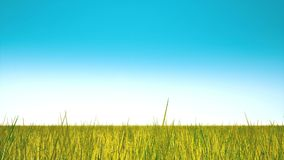 Żółta jesieni trawa i jasny niebo royalty ilustracja