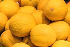 Żółta melonowa tekstura obraz royalty free