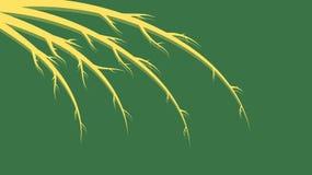Żółte abstrakcjonistyczne piękne gałąź, trzony, linie z cieniami z wzorami na i curlicues, zielonym miejscu dla kopii i tle ilustracji