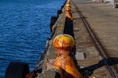 Żółte cumownicy dla łodzi wiązać do rozciągliwości wzdłuż mola w Wellington, Nowa Zelandia obraz stock