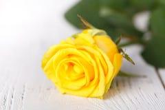 Żółte róże, zamykają up na bielu stole Fotografia Stock