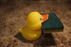 Żółtej gumowej kaczki odosobniony mienie gąbka Zdjęcie Royalty Free