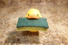 Żółtej gumowej kaczki odosobniony mienie gąbka Zdjęcie Stock