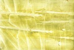 Żółtej zieleni akwareli ilustracja Zdjęcie Royalty Free