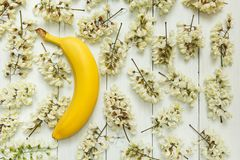 Żółty banan na tle biali akacjowi kwiaty obraz stock