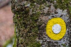 Żółty biały blask na śladzie zdjęcia royalty free