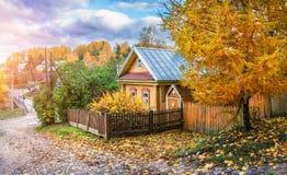 Żółty drewniany rosjanina dom Obrazy Royalty Free