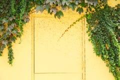 Żółty drzwi i ściana Obraz Royalty Free