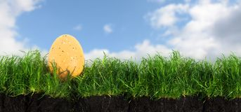 Żółty Easter jajko w zielonej trawy gazonie z ziemią przeciw bl Zdjęcie Stock