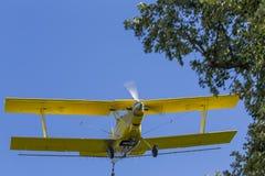 żółty kombinezon upraw, Fotografia Stock