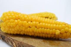 Żółty kukurydzanego cob jarosza jedzenie Zdjęcia Royalty Free