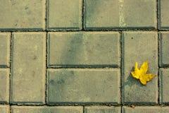 Żółty liść na ceglanej drodze Zdjęcia Royalty Free