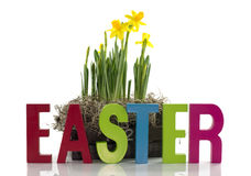Żółty narcyz w drewnianym koszu i Easter fotografia stock