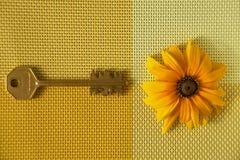 Żółty słonecznika i mosiądza klucz na tkanej tkaninie obraz royalty free