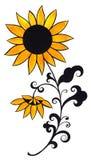 Żółty słonecznikowy Zdjęcie Royalty Free