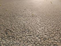 Żółty suchy ląd, susza zdjęcie royalty free