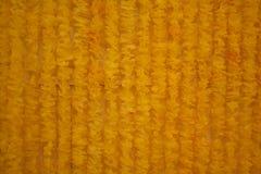 Żółty tło Fotografia Royalty Free