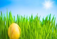 Żółty Wielkanocny jajko Fotografia Stock