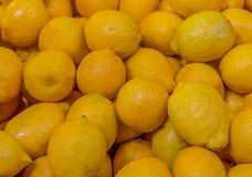 Żółtych soczystych cytryn kwaśny owocowy źródło witamina jaskrawego deseniowego projekta kulinarni podstawowi deserowi koktajle zdjęcie royalty free