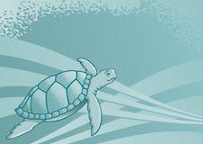 żółw morski ilustracji