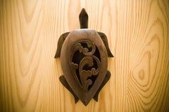 Żółwia drewno Zdjęcie Royalty Free