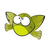 żaba śmieszna Fotografia Stock