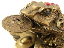 żaba pieniądze Zdjęcia Royalty Free