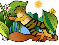 Żaba w spodniach, koloryt książka ilustracji