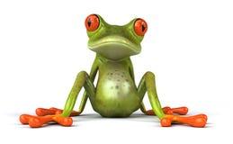 żaba zabawna Obrazy Royalty Free