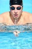 żabki mężczyzna pływaczki dopłynięcie Zdjęcie Stock