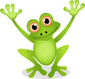 Żaby śmieszna kreskówka Obrazy Royalty Free