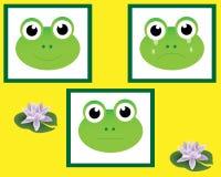 żaby Obrazy Royalty Free