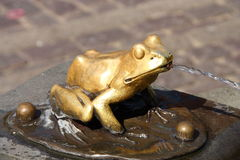 żaby złoto Obrazy Royalty Free