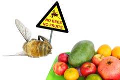 Żadny pszczoły - Żadny owoc obrazy royalty free