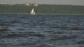 Żaglówka abstrakta wody denny tło morze w tło łodziach, żeglowanie łódź, lasowa lato natura, samotny jacht zbiory wideo