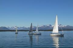 Żaglówki żegluje, błękitny chmurny niebo i biel żagle, Molde Norwegia, Europa zdjęcia stock