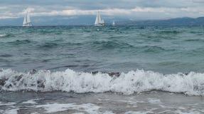 Żaglówki i jachty na dennym oceanu tła krajobrazie obraz stock