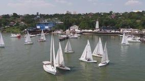 Żaglówki schronienie Wiele piękni cumujący żagli jachty w porcie morskim footage Nowożytny woda transport, lato wakacje zbiory wideo