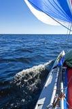 żagla łódkowaty odprowadzenie Obrazy Stock