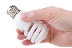 żarówka energooszczędna Zdjęcie Stock
