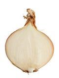 żarówka sok opadowy przyrodni Fotografia Stock