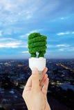 żarówki eco ręki mienia światło Fotografia Royalty Free