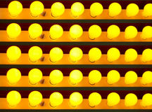 żarówki jasnożółte Fotografia Stock