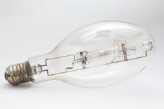 żarówki połowu światło Fotografia Stock
