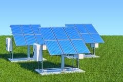 żarówki pojęcia energetycznego kwiatu zielonego światła odnawialny drzewo Panel słoneczny w zielonej trawy agains ilustracji
