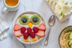 Żartuje śniadaniową oatmeal owsiankę Obrazy Stock