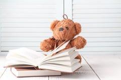 Żartuje edukaci pojęcie, wiru niedźwiedź z książką Fotografia Royalty Free